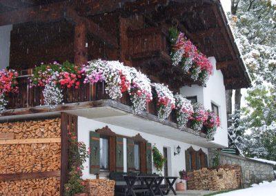 Haus-Ammann_015_RIMG0423
